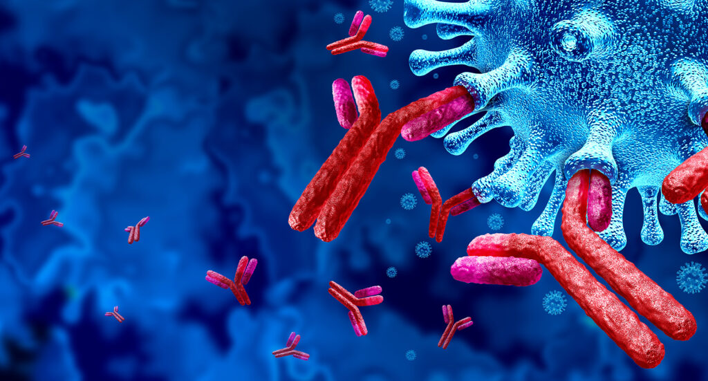 Antibody immune system and Immunoglobulin concept as antibodies attacking contagious virus cells and pathogens as a 3D illustration